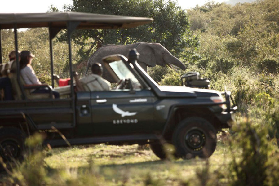 Safari Scapes Ngorogoro Crater