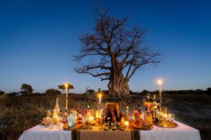 Safari Scapes Mombo