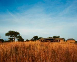 Safari Scapes Singita Sabora