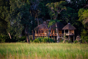 Safari Scapes Botswana Jao 06