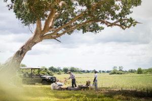 Safari Scapes Botswana Mombo 04