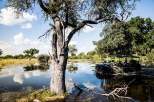 safari-scapes-botswana-Vumbura