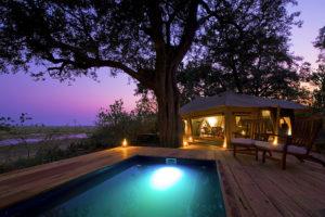 Safari Scapes Botswana Zarafa 03