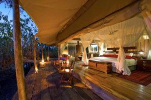 Safari Scapes Botswana Zarafa 04