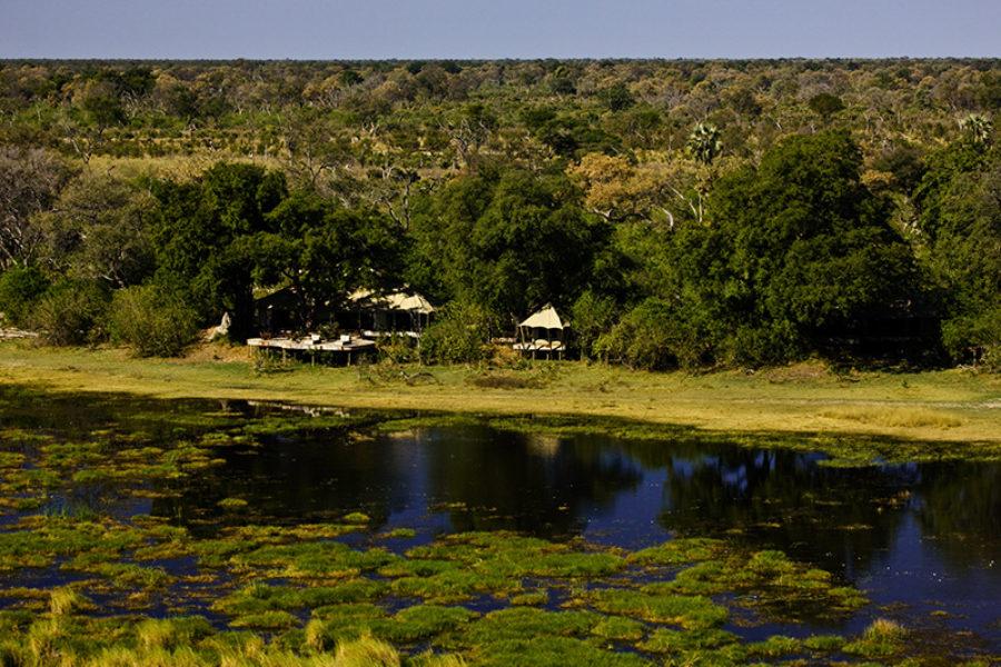 Safari Scapes Botswana Zarafa 07