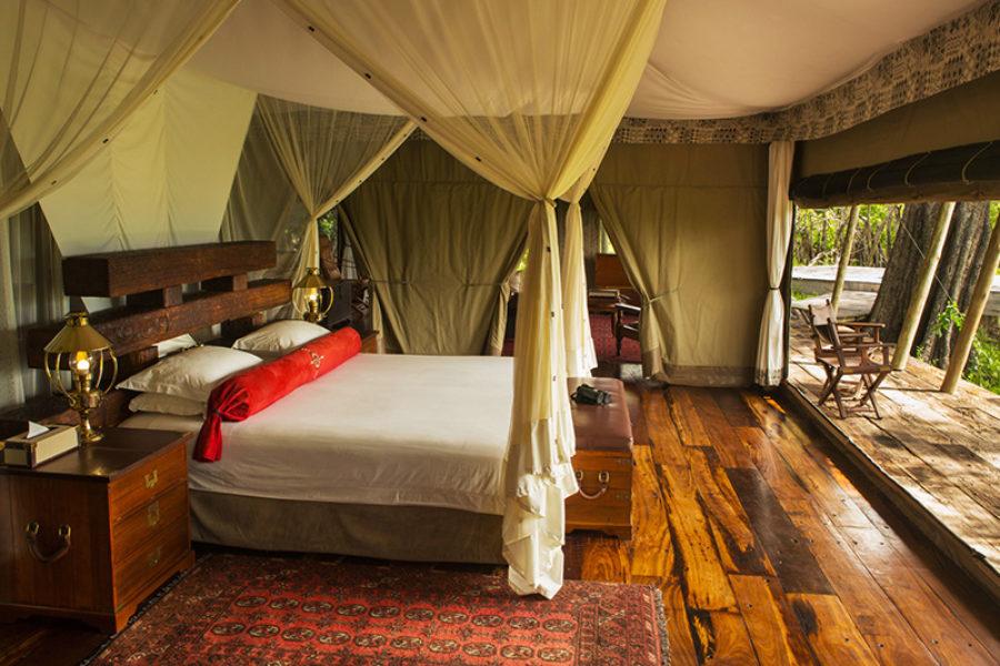 Safari Scapes Botswana Zarafa 11