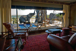 Safari Scapes Botswana Zarafa