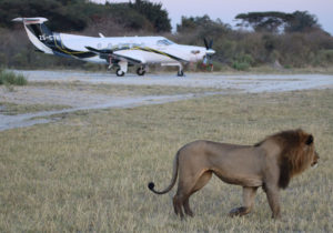 Safari Scapes Our Fleet