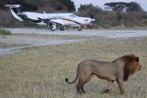 Safari Scapes 09