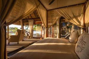 Safari Scapes Botswana Kings Pool 13