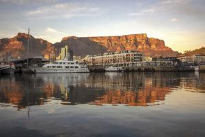 Safari Scapes Cape Town