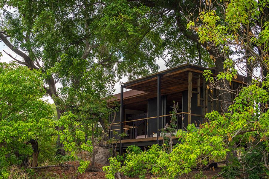 safari-scapes-botswana-Qorokwe