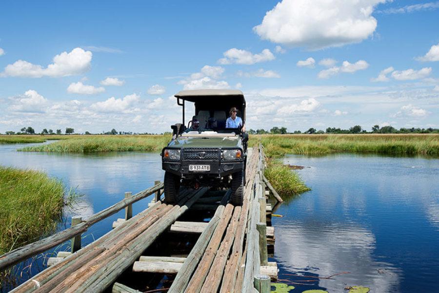 Safari Scapes Botswana Duba Plains