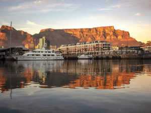 Safari Scapes Cape Town and other South African cities