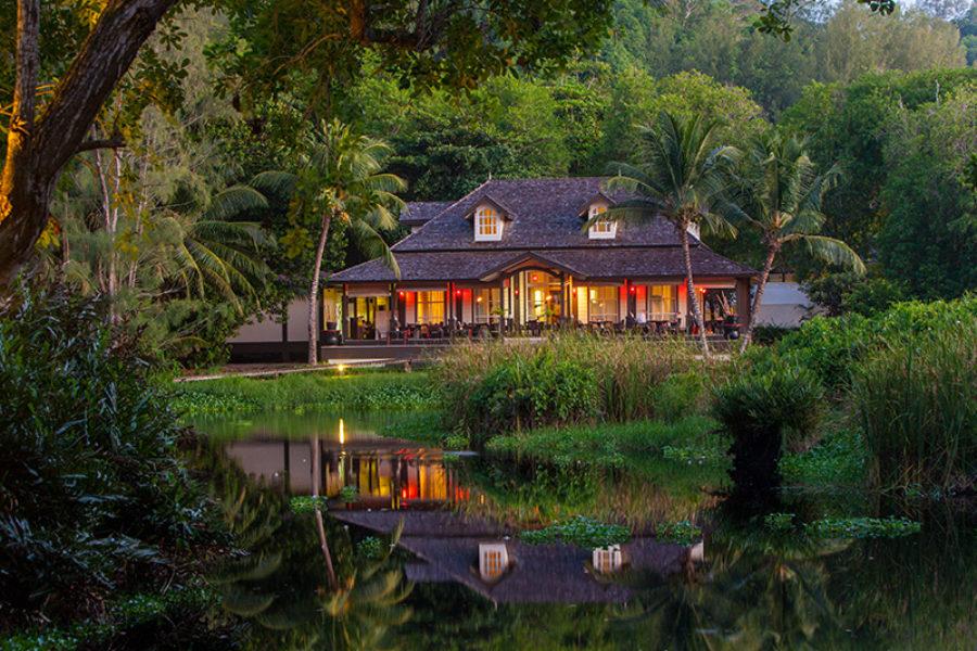 Safari Scapes Seychells Banyan Tree