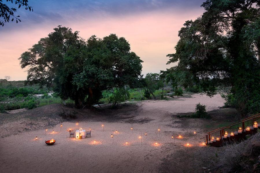 Safari Scapes South African Safari Lion Sands