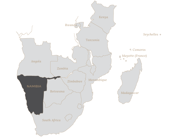 Safari Scapes Namibia