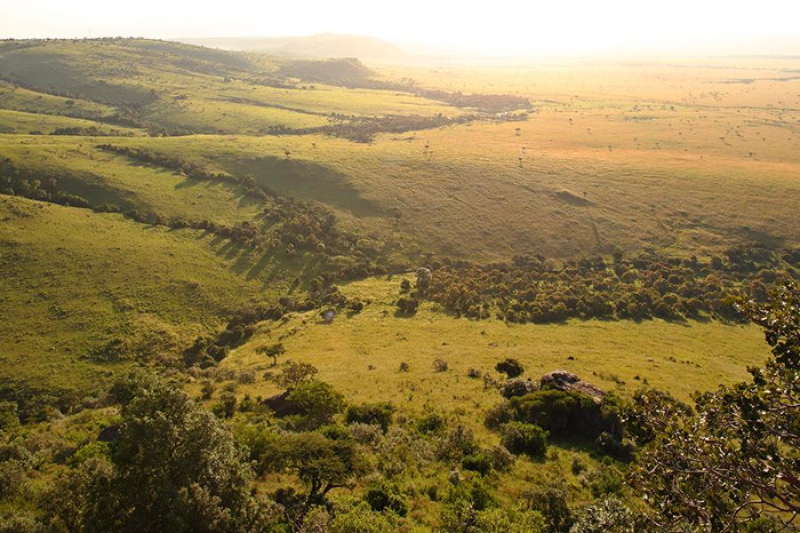Safari Scapes Kenya Angama Mara