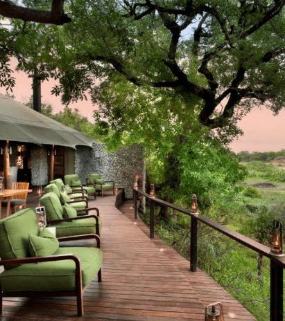Safari Scapes Usa Ngala Tented2019